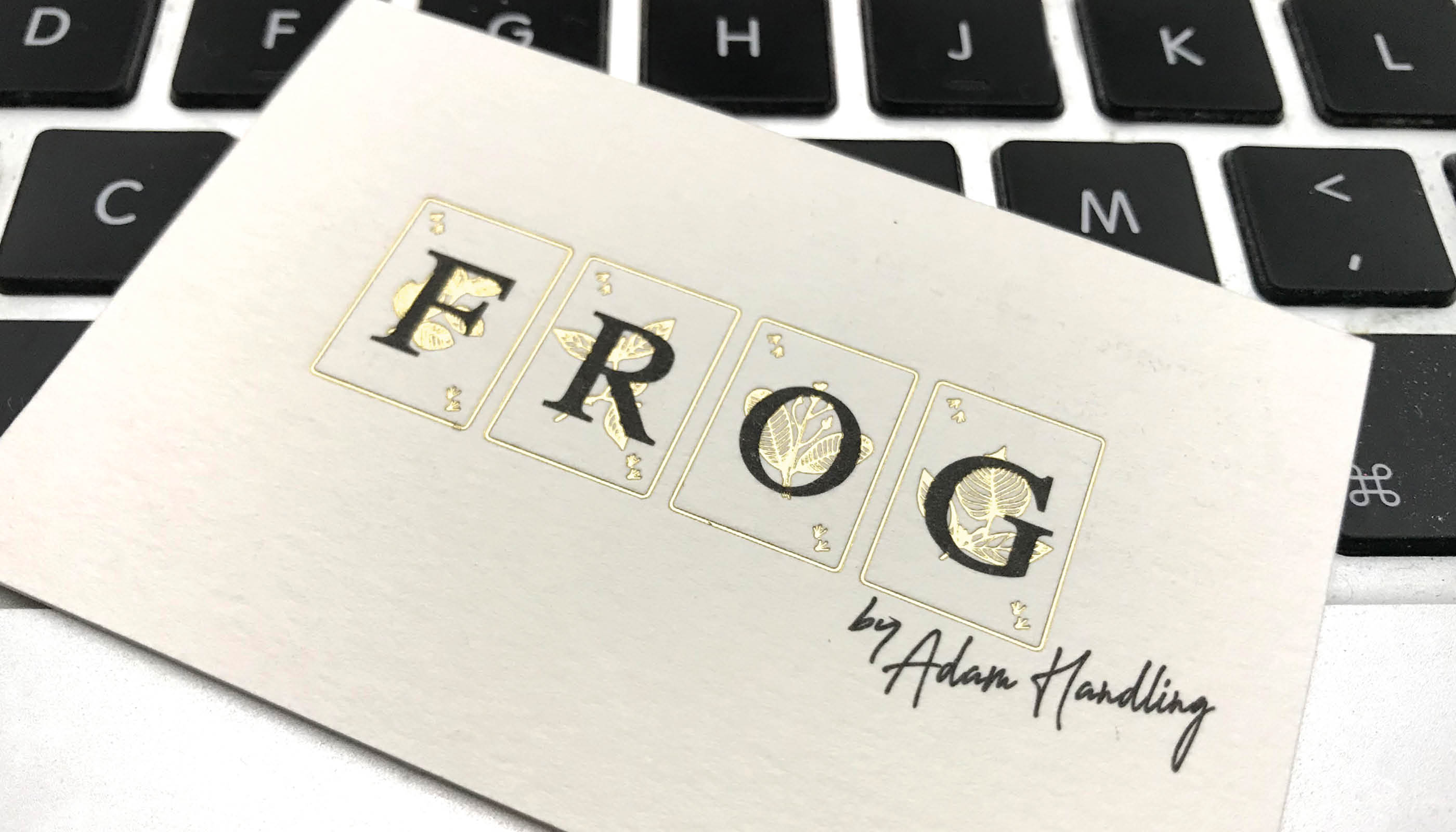 frog_06